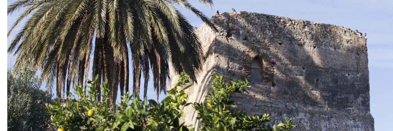 Torre del Blanch de Morell