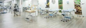 Centros de terapias